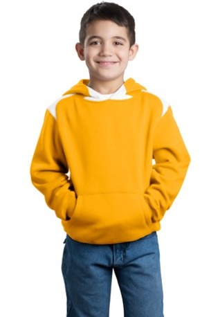 Sport-Tek ®  Youth Pullover Hooded Sweatshirt with Contrast Color. Y264